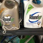 what does the 2 billion monsanto roundup case mean for me